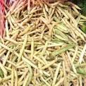 velouté haricots maïs